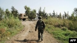 敘利亞官方通訊社發布的照片顯示,敘利亞政府軍士兵2015年10月15日走在哈馬的西北部鄉村的一條路上。