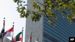 联合国大会年度辩论会