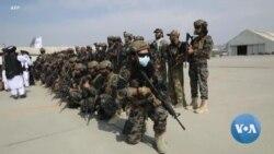 Russia Casts a Pragmatic Eye on Afghanistan's Taliban
