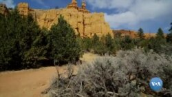Amerikaga sayohat: Brays kanyoni milliy parki