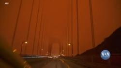 Як українці рятувалися від токсичного повітря у Каліфорнії. Відео