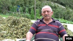 Hilmi Uzunlar owns hazelnut fields but says because of falling prices there is little money to be made from hazelnuts. (D. Jones/VOA)