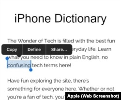 iPhone Dictionary