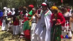 'Irreecha' Naayroobii fi Baqattoota Oromoo