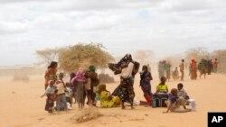 Dadaab qochqinlar lageridagi somalilik oilalar.