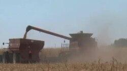 美国将加强食品安全保障措施