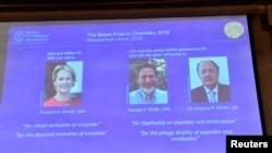 Pictures of the 2018 Nobel Prize laureates for chemistry: Frances H. Arnold of the United States, George P. Smith of the United States and Gregory P. Winter of Britain are displayed on a screen during the announcement at the Royal Swedish Academy of Scien