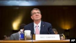 美國國防部長卡特(Ash Carter)12月9日出席國會聽證會
