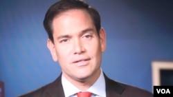 代表美國佛羅里達州的國會參議員馬可‧魯比奧(Marco Rubio)