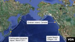 مسیری که بقایای زمین لرزه و سونامی ژاپن به آمریکا طی کردند