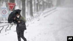 Seorang pria berjalan di tengah badai salju di Yokohama, Jepang, Sabtu 8 Februari 2014.