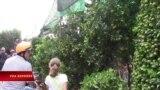 Thương hồ hoa kiểng trên Bến Bình Đông