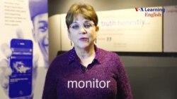 monitor (noun)