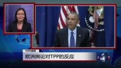 VOA连线:欧洲舆论对TPP的反应及英国官员倡导中国价值引发争议