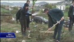 Ndërgjegjësim për mjedisin