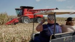 參觀內布拉斯加州格蘭德島剝殼收穫日農場展覽的遊客觀看玉米收割(2019年9月10日)。