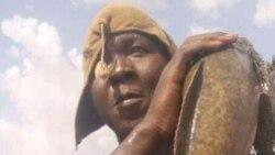 """Mali: san ka ouw ka """"Sanke mon"""" kera Alamissa do Juin kalo tile 20-2019,"""
