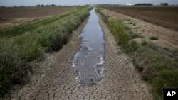 Nước của hệ thống dẫn thủy, chảy trong một con mương khô cạn giữa 2 cánh đồng lúa, cung cấp nước cho các cánh đồng ở Richvale, California.