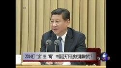 """时事大家谈:2014打""""虎""""拍""""蝇"""",中国迎天下无贪的清廉时代?"""