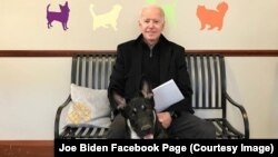 Joe Biden and his Dog