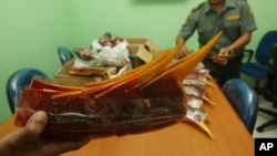 FILE - Indonesian forestry ministry officials show stacks of hornbill's beaks confiscated from four Chinese nationals, during a press conference in Jakarta, Indonesia, Jan. 7, 2013.