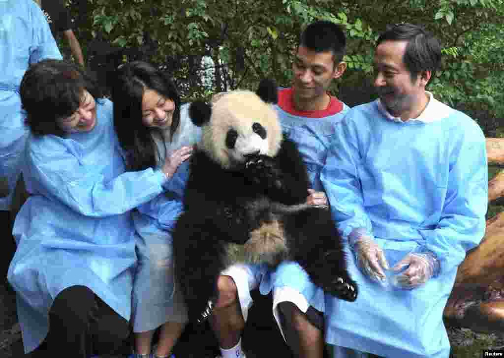 Košarkaš Houston Rocketsa Jeremy Lin sa pandom u krilu u jednojednoj bazi za nadzor i brihu o pandama u provinciji Sichuan, Kina.