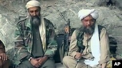 미군 특수부대에 사살된 알카에다의 전 지도자 오사마 빈 라덴(왼쪽)과 현 지도자 아이만 알자와히리.