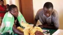 Malaria Deaths Drop Drastically; WHO Predicts More Success