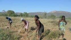 Huíla: Cr ise leva ao regresso à terra - 1:36