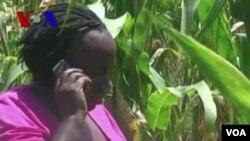 Les cellulaires, de plus en plus prisés dans les régions les plus reculées de l'Afrique