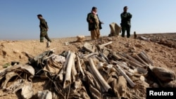 FILE - Bones, suspected to belong to members of Iraq's Yazidi community, are seen in a mass grave on the outskirts of the town of Sinjar, November 30, 2015.