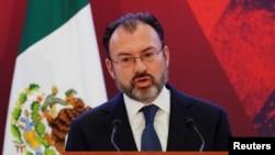 Ngoại trưởng Mexico Luis Videgaray.