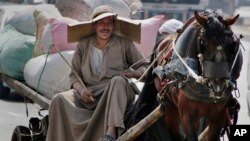 An Egyptian farmer rides his horse cart as he uses a makeshift hat with cardboard to protect his head from direct sunlight on a Cairo street, Aug. 11, 2015.