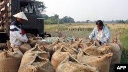 Các cộng đồng ở miền nam Lào vẫn đang chật vật phục hồi từ ảnh hưởng của trận bão Ketsana hồi năm 2009