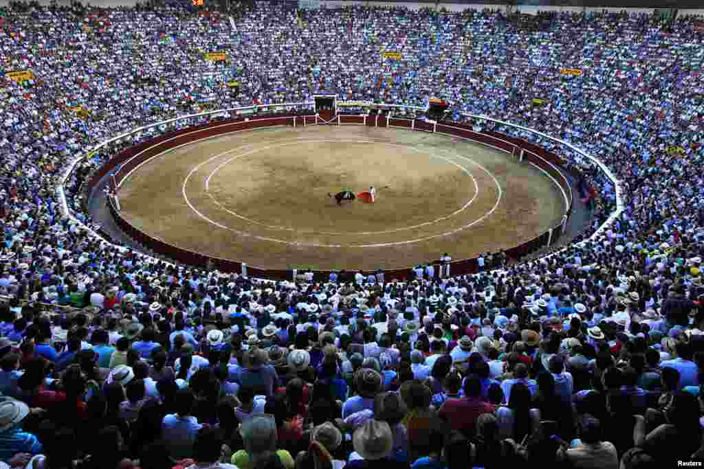 Spectators watch Colombian bullfighter Luis Bolivar perform a pass during a bullfighting festival at the Canaveralejo bullring in Cali, Colombia.