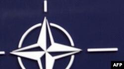 NATO'yu 2012'de Zorlu Bir Yıl Bekliyor