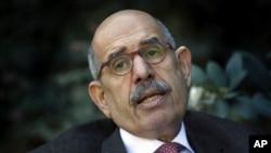Muhamed El Baradej (arhiva)