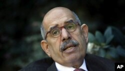 FILE - In this Saturday, Feb. 27, 2010 file photo, former U.N. nuclear chief Mohamed el Baradei talks during an interview with the Associated Press at his house in the outskirts of Cairo, Egypt. An Egyptian official says the country's top prosecutor has o
