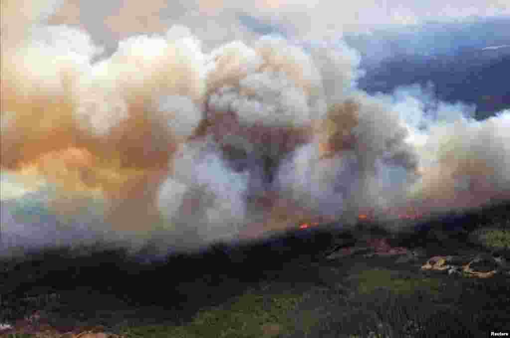 جنگل میں یہ آگ اتوار کو لگی تھی جس نے بدھ تک 24710 ایکڑ پر محیط جنگل کو اپنی لپیٹ میں لے لیا۔
