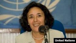 聯合國特別代表澤魯居伊
