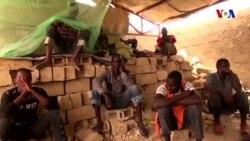 Boko-Haramın sabiq döyüşçüləri üçün keçid düşərgələri açılır