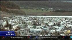 Ndotja e Liqenit të Kukësit