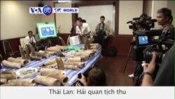 Hải quan Thái tịch thu 315 kg ngà voi châu Phi nhập lậu (VOA60)