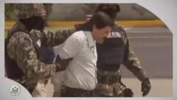 Punto de Vista: Mexican Drug Lord Captured