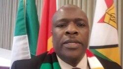 'Zimbabwe NGO Should Complement Govt Programs'