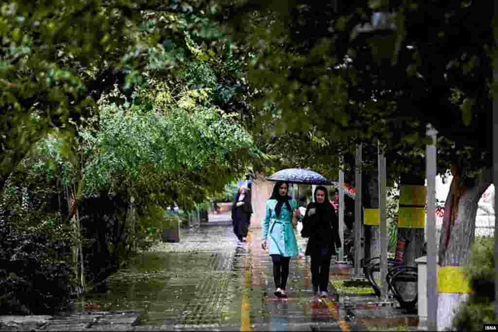 باران روزهای پایانی تابستان در تهران؛ بهترین بهانه برای قدم زدن در پیاده روهای پایتخت.