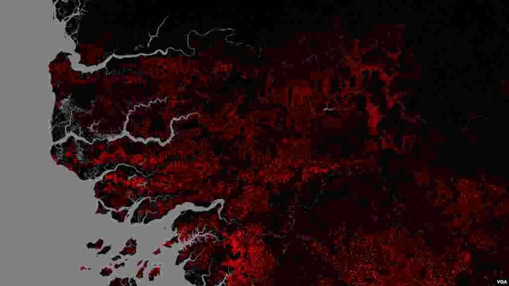 Image de la forêt de Casamance en 2015 avec en rouge la disparition de forêt de 2010 à 2015 (Université de Maryland USA)