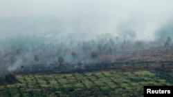 FILE - An aerial view of burned trees during the haze in Indonesia's Riau province, June 28, 2013.