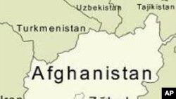 اہم طالبان رکن گرفتار