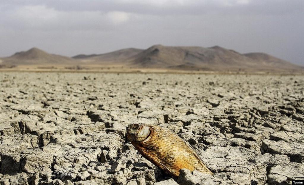 مرگ تالاب آق گل- همدان عکس: عبدالرحمان رأفتی